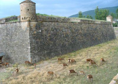 citadel-393255_1280